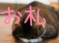 御礼.+*:゚+。.☆